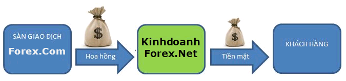 Forex in express avenue